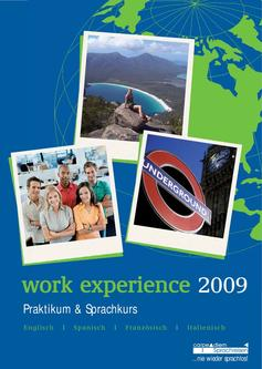Work Experience 2009