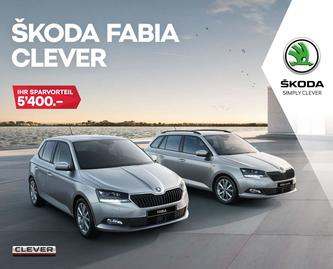 FABIA Clever 01/2019