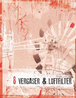 Vergaser & Luftfilter 2013