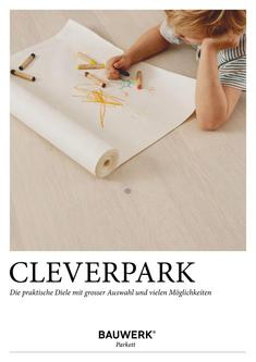 Cleverpark 2017