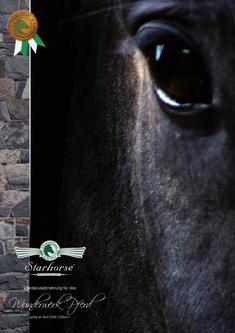 Starhose Zusatznahrung fürs Pferd 2011
