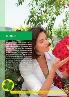 pflanzen katalog in pflanzen garten freizeit katalog 2011 von raiffeisen lagerhaus zwettl. Black Bedroom Furniture Sets. Home Design Ideas