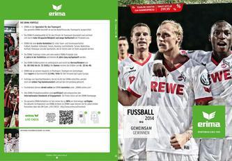 Fussball 2014 (Österreich)
