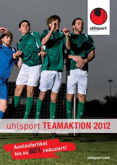 Teamaktion 2012-2