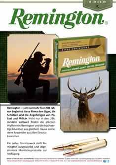 Remington 2013