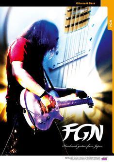 FGN 2013