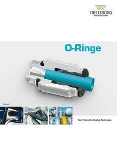 O-Ringe 2013
