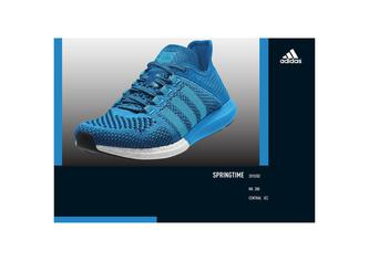 Adidas Textil and Shoes Q2 2015