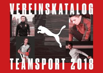 Puma Teamsport 2018